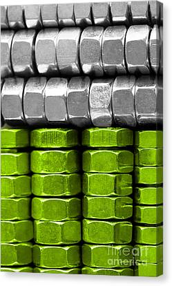 Absolutely Nuts Lime Green Wall Art IIi Canvas Print by Natalie Kinnear