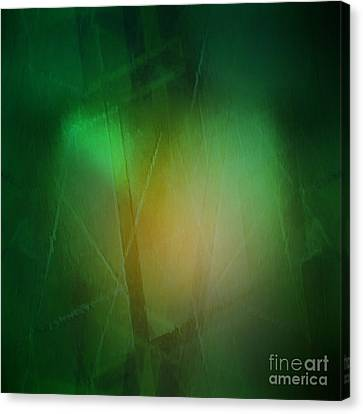 Abstract 1005 Canvas Print by John Krakora