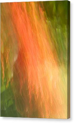 Abstract 16 Canvas Print