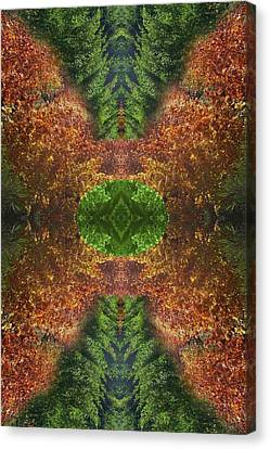Abstract 164 Canvas Print by J D Owen