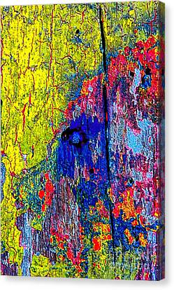 Abstract 201 Canvas Print by Nicola Fiscarelli