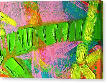 abstract 6814 Diptych Cropped XIV Canvas Print by John  Nolan