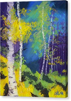 Abstract Aspens Canvas Print by Dana Strotheide