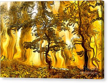 Abstract Autumn Forest Paint Canvas Print