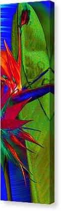 Abstract Bird Canvas Print by Ron Regalado