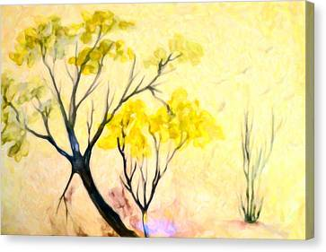 Abstract Bonzai Tree Canvas Print by Tommytechno Sweden