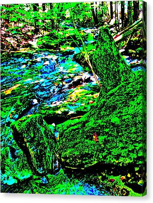 Abstract Brook Bits 56 Canvas Print by George Ramos