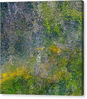 Abstract By Nature Canvas Print by Roxy Hurtubise
