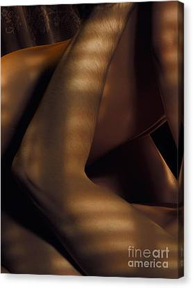 Abstract Closeup Of Man And Woman Making Love Canvas Print by Oleksiy Maksymenko