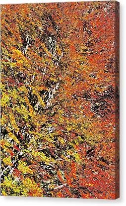 Abstract Fall Canvas Print by Cristina-Velina Ion