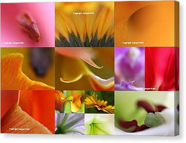 Abstract Fine Art Flower Photography Canvas Print by Juergen Roth