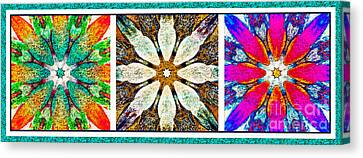 Abstract Flower Triptych Canvas Print by Barbara Griffin