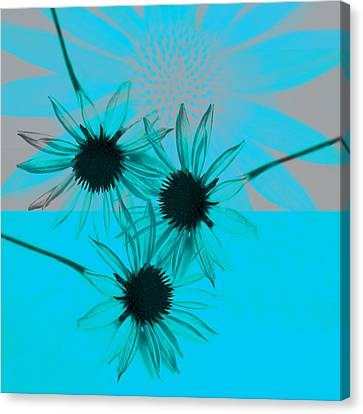 abstract - flowers - Flower Collage  Canvas Print by Ann Powell