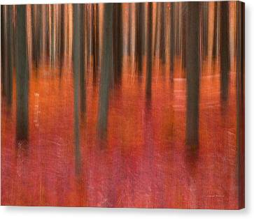 Warm Canvas Print - Abstract Forest 2 by Leland D Howard