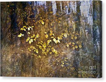 Abstract Forest Canvas Print by Yuri Santin