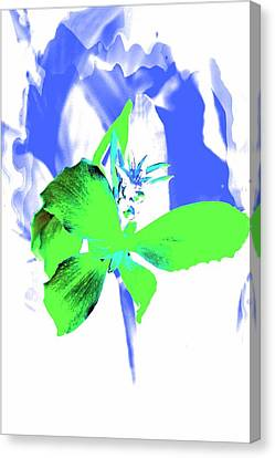 Abstract Green Canvas Print by Cathie Tyler