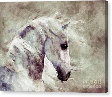 Abstract Horse Portrait Canvas Print by Elle Arden Walby