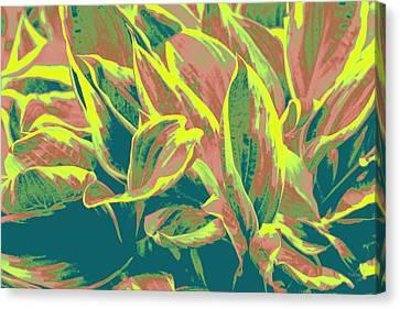 Abstract - Hostatakeover Canvas Print by Deborah  Crew-Johnson