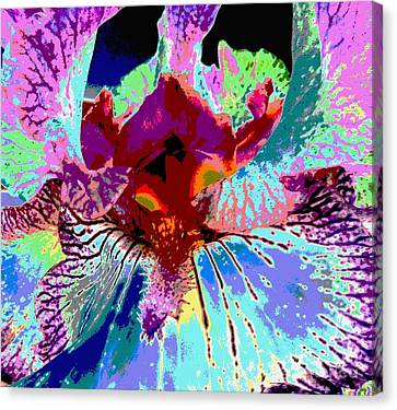 Canvas Print featuring the photograph Abstract Iris by Sally Simon