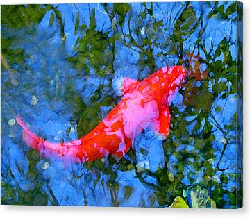 Abstract Koi 4 Canvas Print by Amy Vangsgard