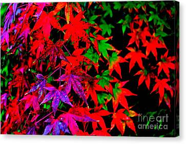 Canvas Print featuring the photograph Abstract Leaves by Jay Nodianos