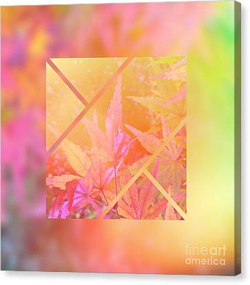 Abstract Maple Leaf Magic 2 Canvas Print by Beverly Claire Kaiya