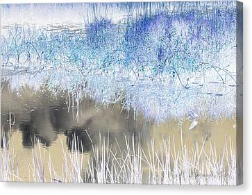 Abstract Marsh  Canvas Print