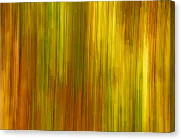 Abstract Nature Background Canvas Print by Gry Thunes