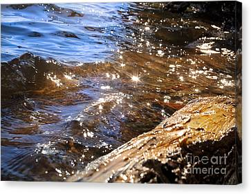 Abstract Of A Lake Shore Canvas Print