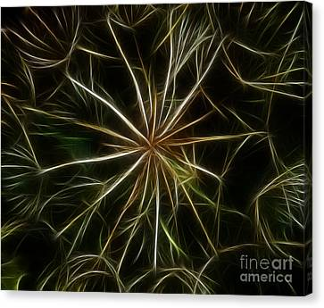 Abstract Of Nature 2 Canvas Print by Vivian Christopher
