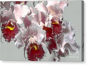 Abstract Orchid Canvas Print by Linda  Parker