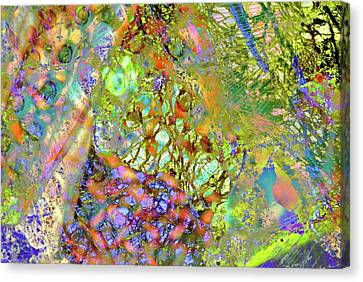 Merged Canvas Print - Abstract Polarised Light Micrographs by Steve Lowry