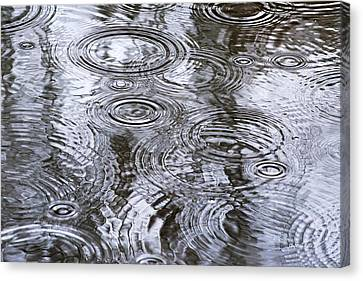 Abstract Raindrops Canvas Print by Christina Rollo