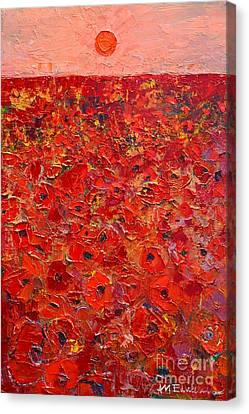 Abstract Red Poppies Field At Sunset Canvas Print by Ana Maria Edulescu