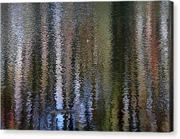 Abstract Tree Reflections Canvas Print by Juergen Roth