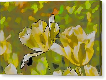 Canvas Print featuring the photograph Abstract Tulip by Leif Sohlman