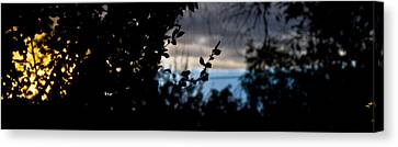 Abstract Window View Canvas Print by Atom Crawford