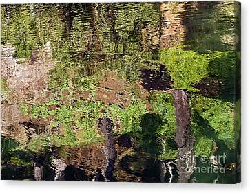 Canvas Print featuring the photograph Abstracted Reflection by Kate Brown