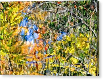 Abstracts Of Nature Canvas Print by Frozen in Time Fine Art Photography
