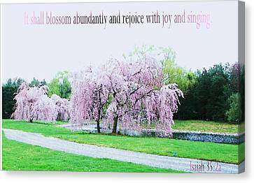 Canvas Print featuring the photograph Abundant Blossom by Pamela Hyde Wilson