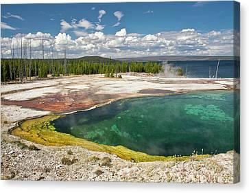Abyss Pool, West Thumb Geyser Basin Canvas Print