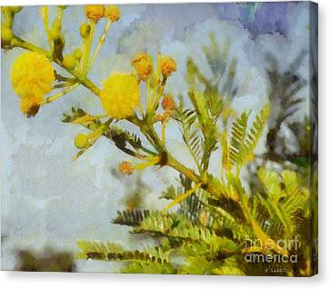 Canvas Print featuring the painting Acacia by Kai Saarto