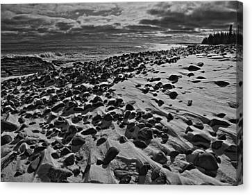 Acadia Beach In Winter Canvas Print by David Rucker