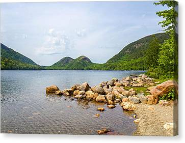 Acadia Bubble Mountains  Canvas Print by Trace Kittrell