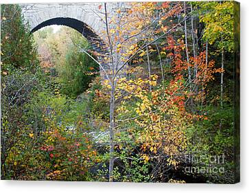Acadia Carriage Bridge Canvas Print