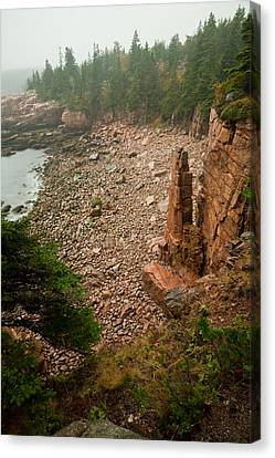 Acadia Fog At Monument Cove 4337 Canvas Print by Brent L Ander