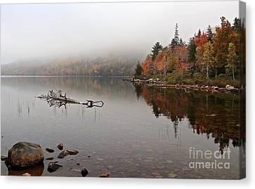 Acadia In The Fog Canvas Print