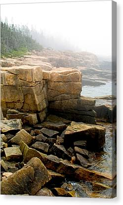 Acadia Morning 7647 Canvas Print by Brent L Ander