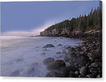 Acadia Morning Mist Canvas Print by Juergen Roth