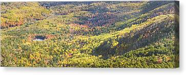 Acadia National Park - Cadillac Mountain- Fall Folige- Maine Canvas Print by Keith Webber Jr
